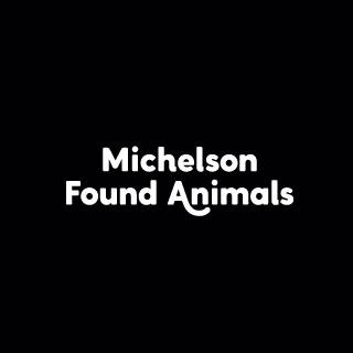 Found Animals
