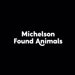 Found Animals